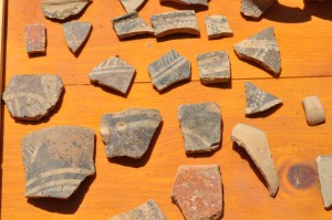 Pottery sherds from Middle Minoan excavations