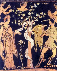 Medea gives the guardian serpent a sleeping potion while Jason steals the Golden Fleece from a tree in the sacred grove.