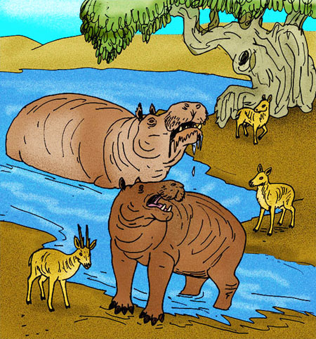 The dwarf hippopotomus was widespread across Crete, but became extinct long ago.