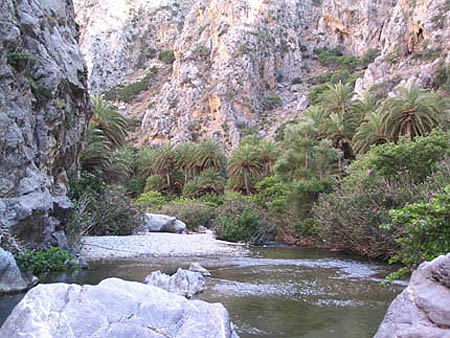 Several cave dwellings were found near Preveli Gorge, which flows into the sea.